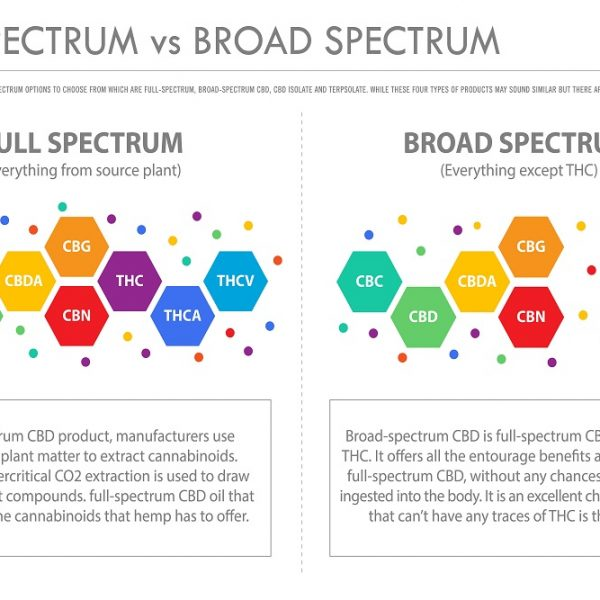 Full-Spectrum, Broad-Spectrum and CBD Isolate: What Are They?
