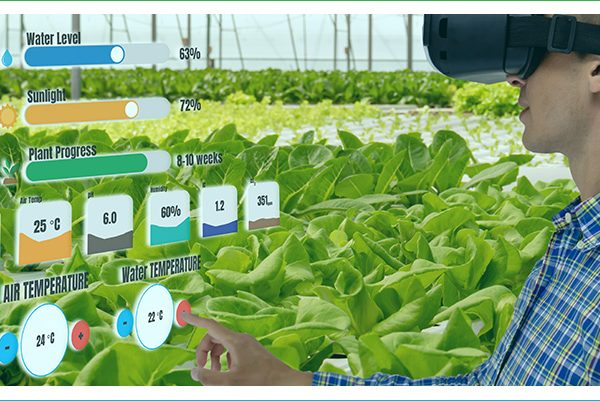 Opting for smart farming as IoT solutions?